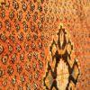 Vintage Shiraz